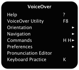 voiceover1.png